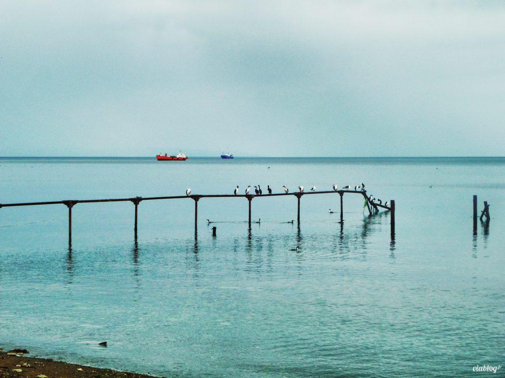 la pêche Chili